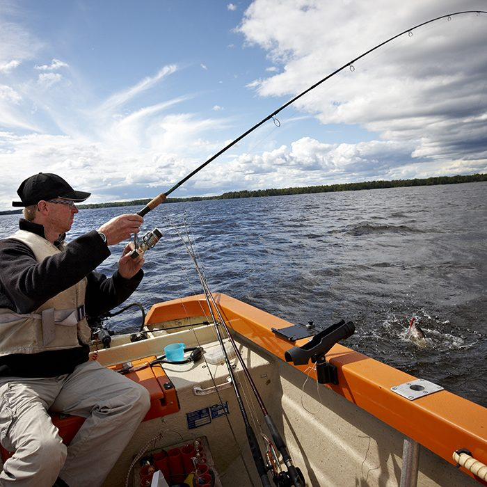 Allemansrätten & fiske
