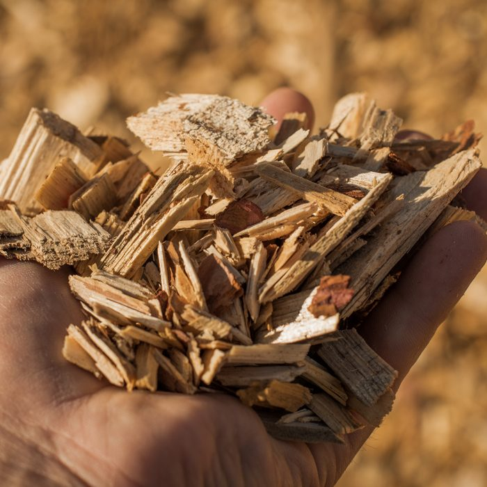 A handful of dry technological wood chips