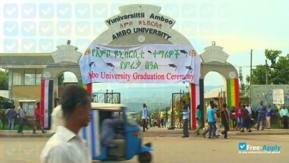 Ambo University - Free-Apply com