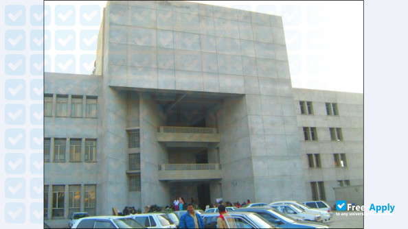 Pakistan Institute Of Fashion And Design Free Apply Com