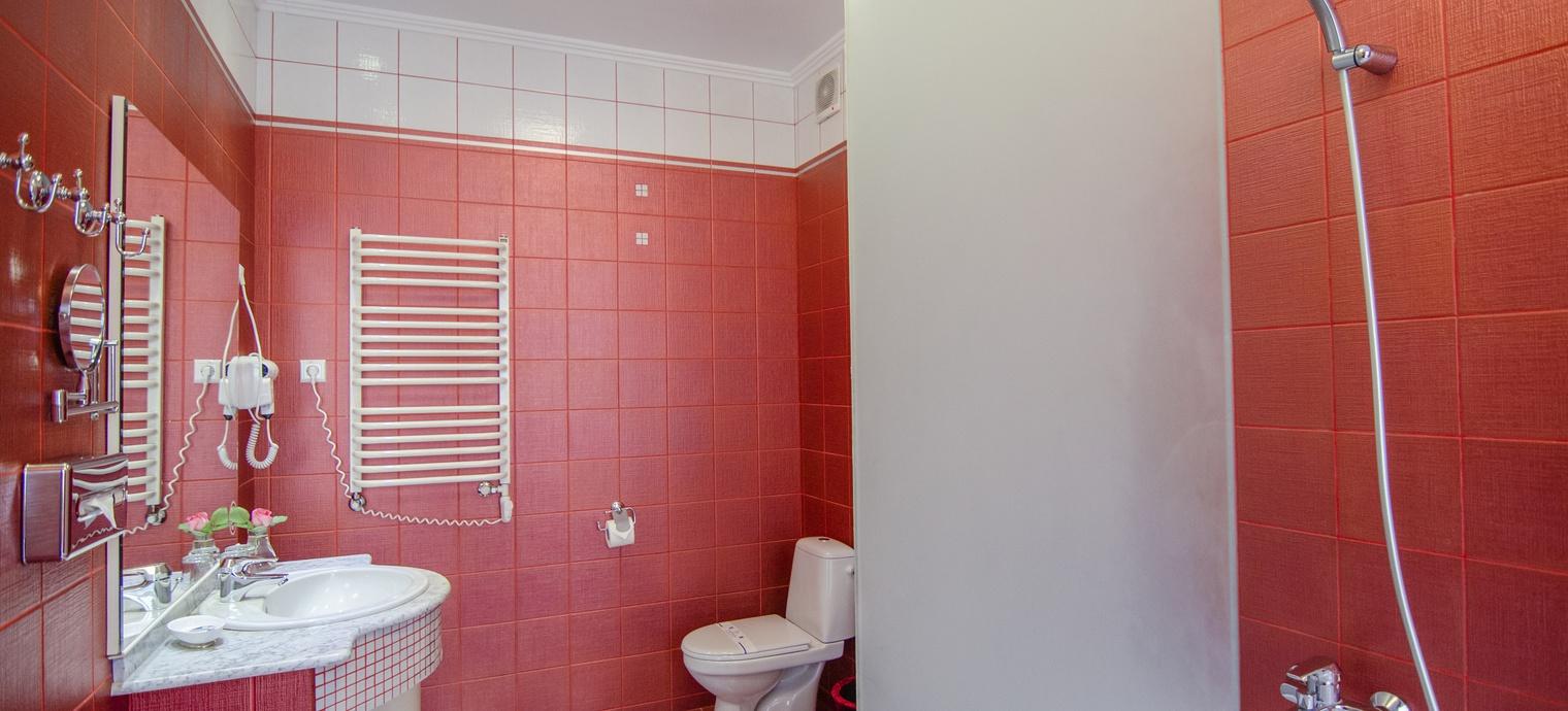 Apartament Deluxe. 8