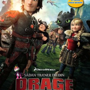 How to Train Your Dragon 2 - DVD