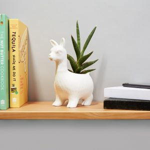 Lloyd The Llama Planter (21793)