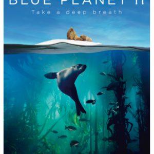 Blue Planet II - DVD