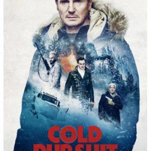 Cold Pursuit - DVD