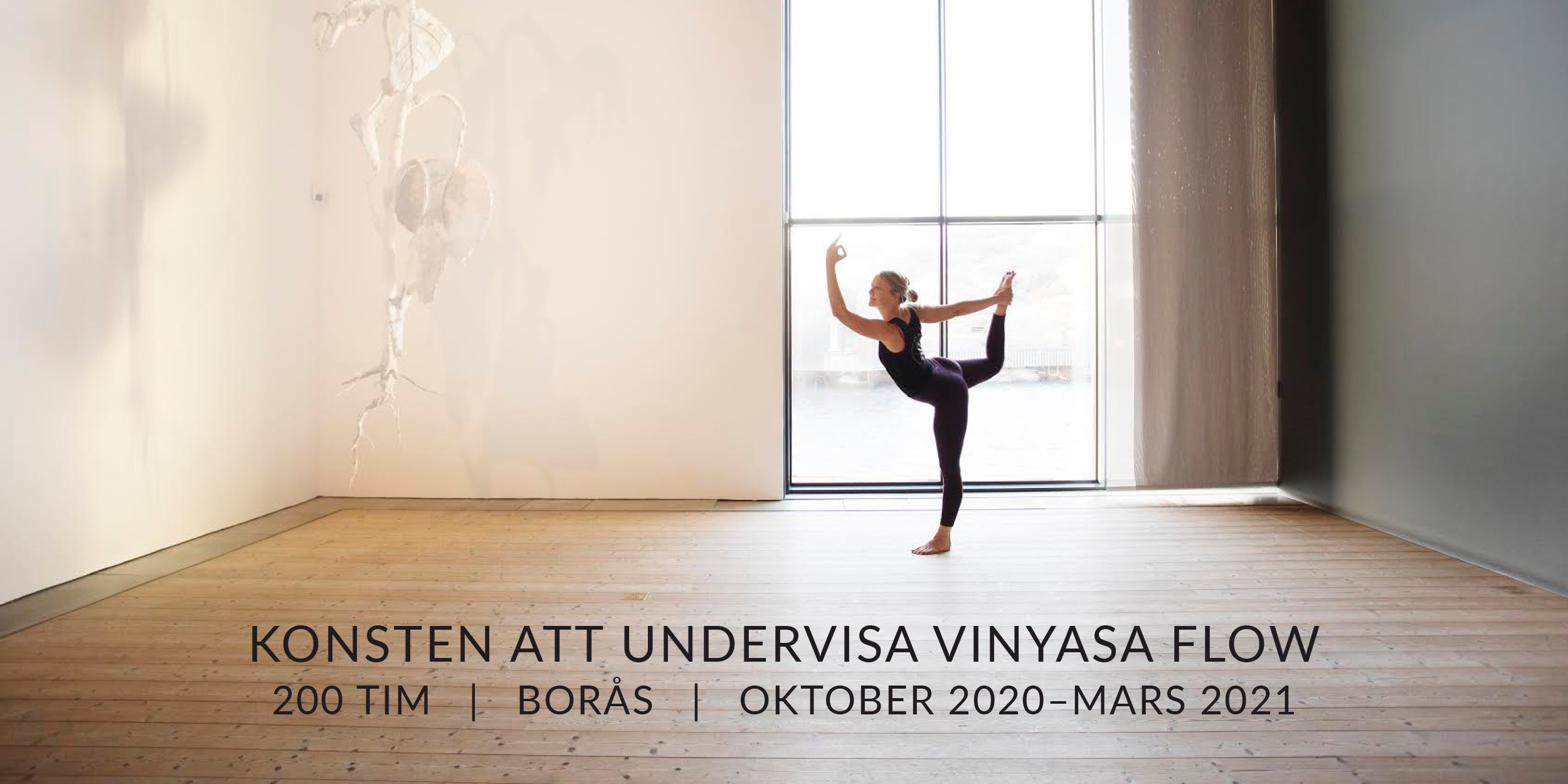 Vinyasa teacher training %281%29