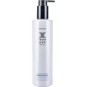 Silver Shampoo Vibrant Blue, 300 ml Antonio Axu Shampoo