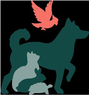 Med personligt bemötande och professionell djursjukvård erbjuder Veterinärgruppen Växjö det bästa för dig och ditt djur.